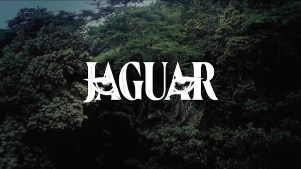 VICTORIA MONÉT - Jaguar