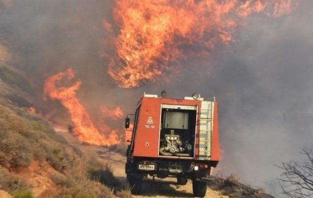 Ανεξέλεγκτη φωτιά στη Σιθωνία Χαλκιδικής – Διακοπές ρεύματος, «έπεσαν» τα κινητά