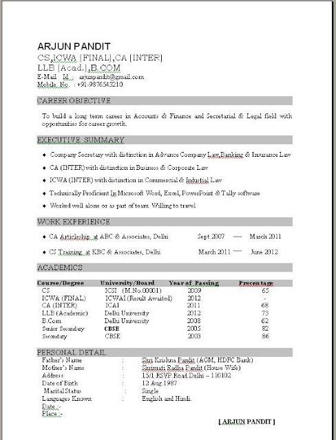 Excellent Resume Sample Format