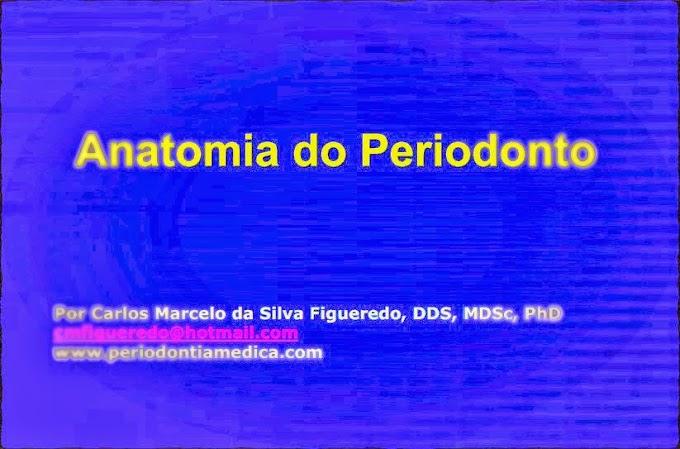 PDF: Anatomia do Periodonto - Prof. Carlos Marcelo da Silva Figueredo