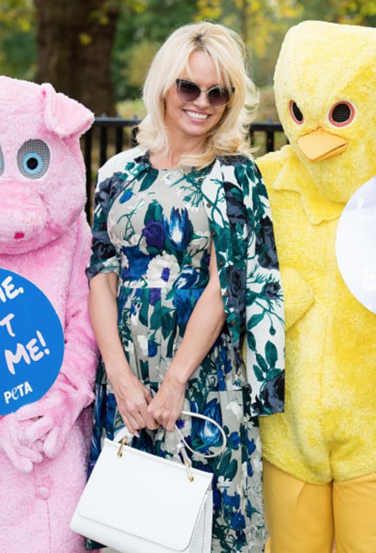 Pamela Anderson Fury Fandom
