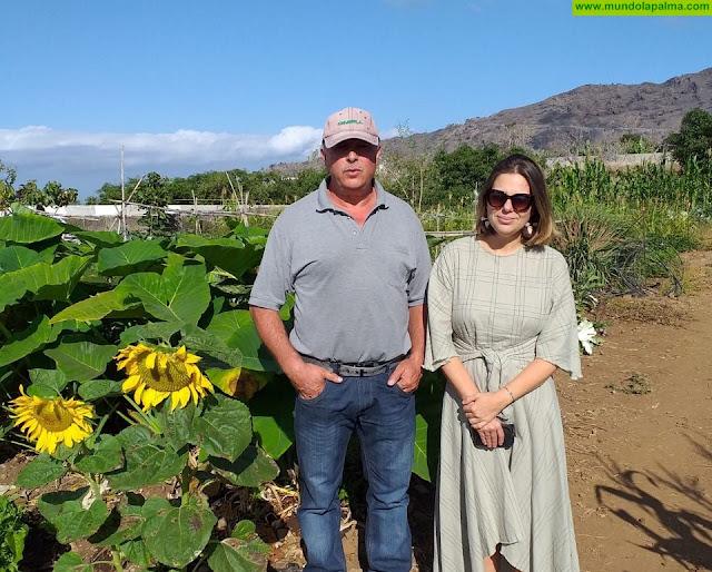 El Ayuntamiento de Los Llanos abre una nueva convocatoria para adjudicar 15 huertos municipales