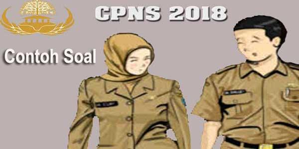 Contoh Soal Tes CPNS 2018