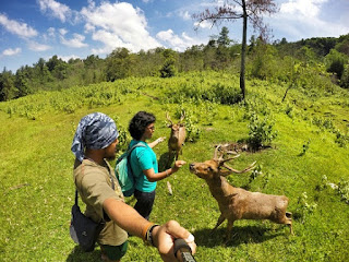 Tempat Wisata Di Jonggol Bogor Jawa Barat