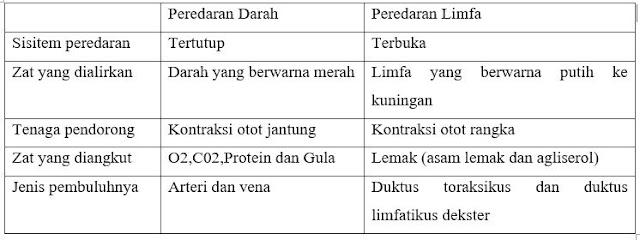 Perbedaan saluran limfatik dengan saluran pembuluh darah