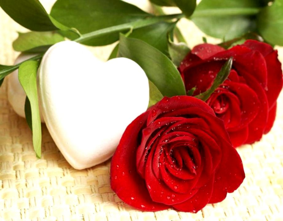 Hearts White Roses Red Flowers Hd Wallpaper | Wallpapers Moving