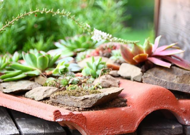 teacup in the garden ein mini projekt und lese lach spa. Black Bedroom Furniture Sets. Home Design Ideas