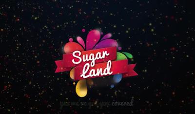 Luxury City Hotel [Sugar Land]