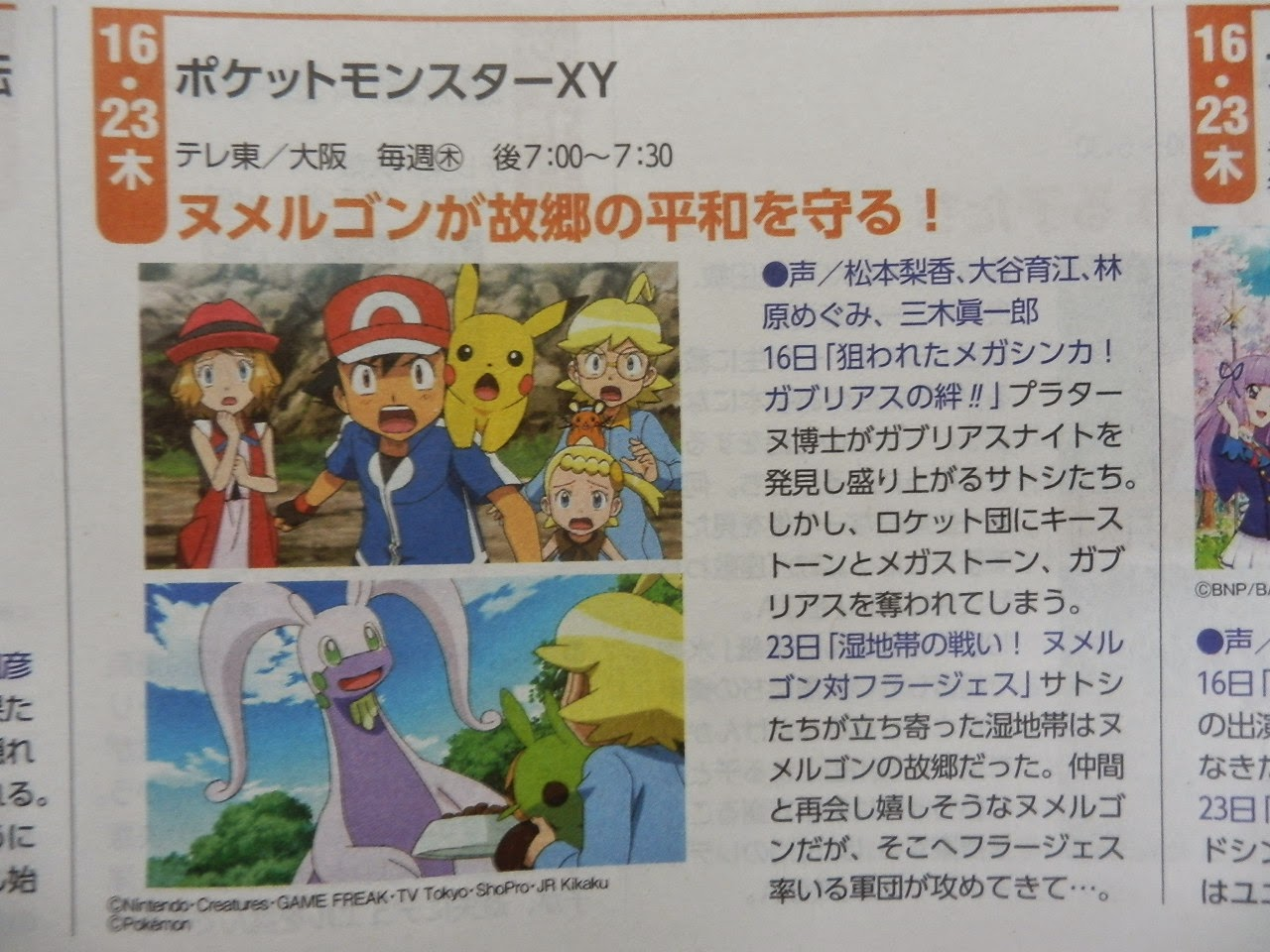Goodra Vs Florges Pokemon
