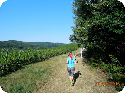 alergare prin vie