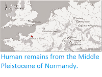 http://sciencythoughts.blogspot.co.uk/2014/10/human-remains-from-middle-pleistocene.html