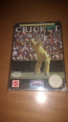 international cricket nes