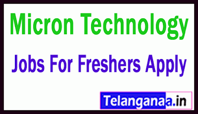 Micron Technology  Recruitment Jobs For Freshers Apply