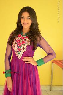 Actress Pooja Jhaveri Latest Stills in Purple Salwar Kameezt at Dwaraka Success Meet  0041.JPG
