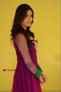 Actress Pooja Jhaveri Latest Stills in Purple Salwar Kameezt at Dwaraka Success Meet  0056.JPG