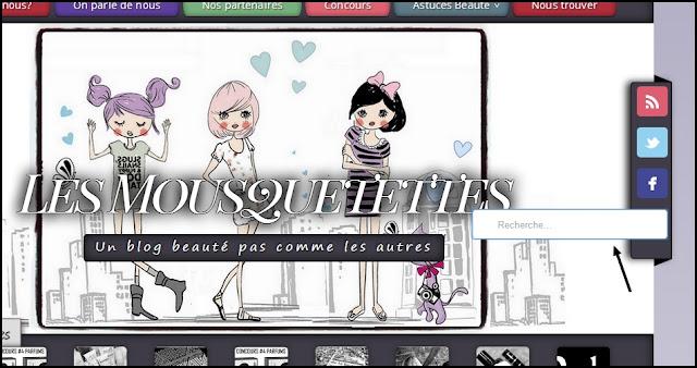 Manuel d'utilisation d'un blog beauté pas comme les autres Les Mousquetettes© - Moteur de recherche interne