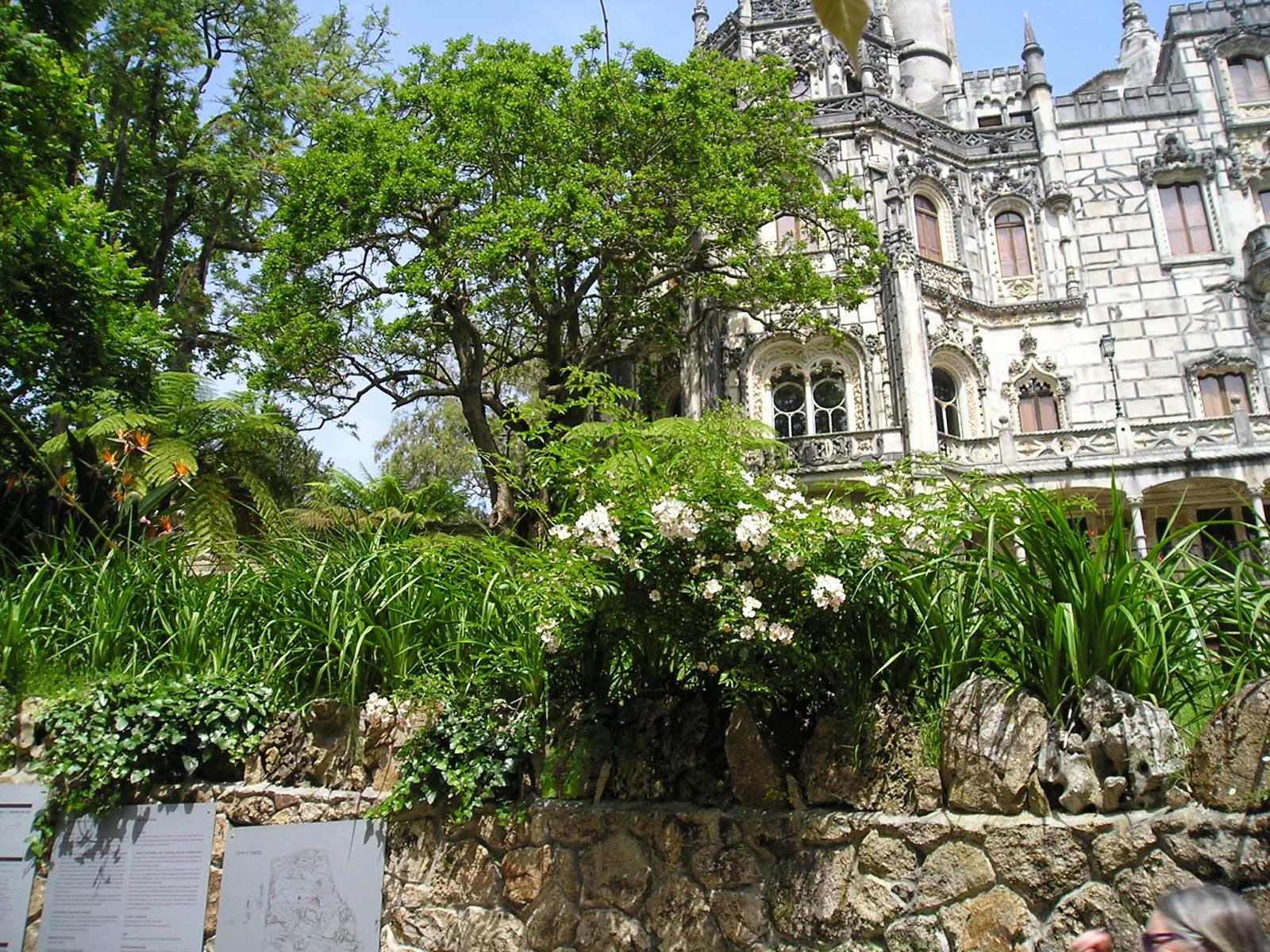 Portugalenphotos jardins de la regaleira a sintra for Jardins de jardiniers