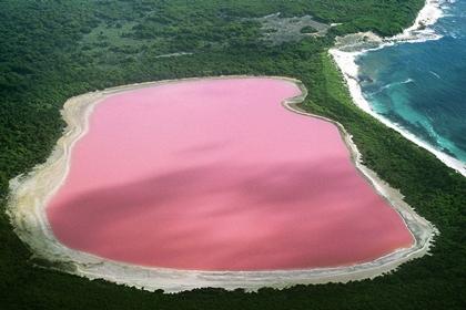 ทะเลสาบฮิลเลอร์ (Lake Hillier) @ www.travellingmoods.com