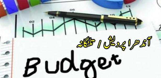 union-budget-2019-ap-telangana