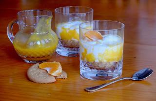 helado-de-yogur-con-mandarina, tangerine-yogur-icecream
