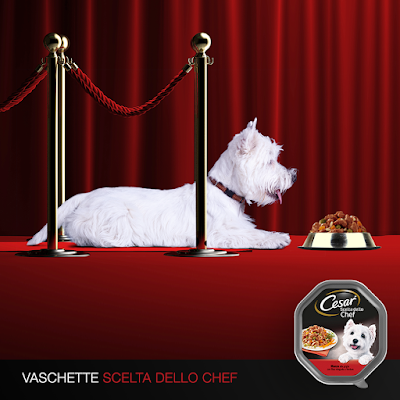Cesar Scelta dello Chef
