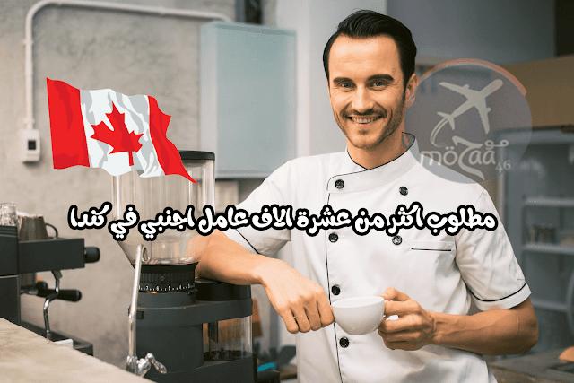 اكثر من 10000 عامل مطلوب في كندا لمختلف المهن