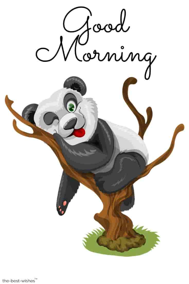 good morning with hd panda images
