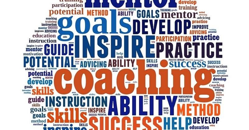 Image result for Reasons To Use A Franchise Coaching