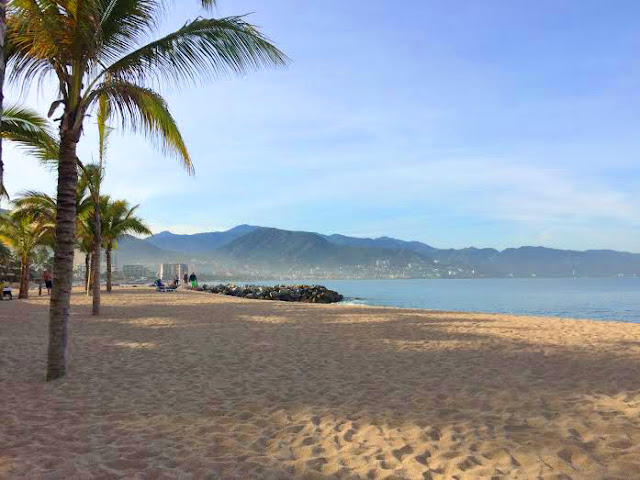 Puerto Vallarta, beach, sunny rebecca, Mexico, Ocean, Palm trees,