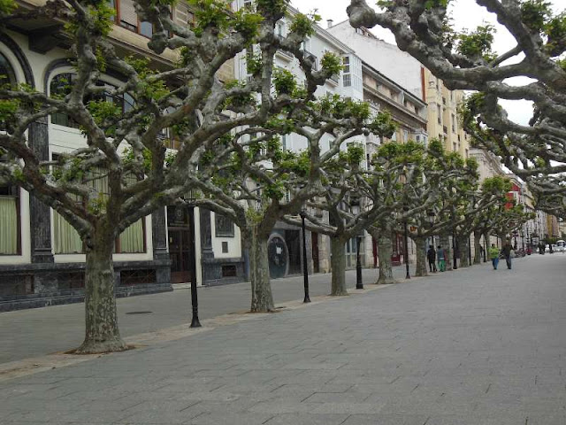 Burgos, Camino, Jola Stepien