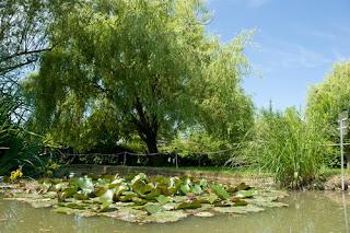 The Aldrovandi Botanical Gardens in Bologna