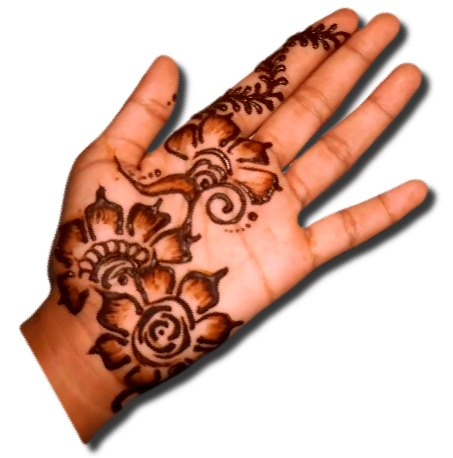 Simple Flower Mehndi Designs For Front Hand