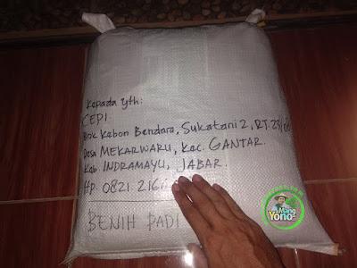 Benih Padi TRISAKTI dan CAKRABUANA02 pesanan CEPI (Sesudah Packing)