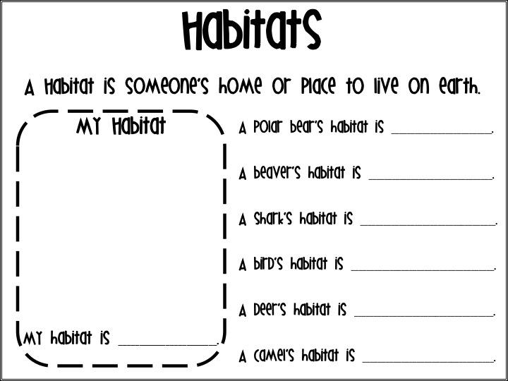First Grade Fanatics: Habitats & What to Eat Wednesday