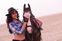 Rashi Khanna Hot in Supreme Movie HeyAndhra