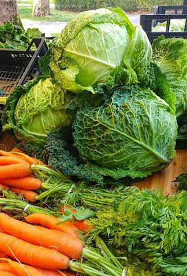 verze e carote
