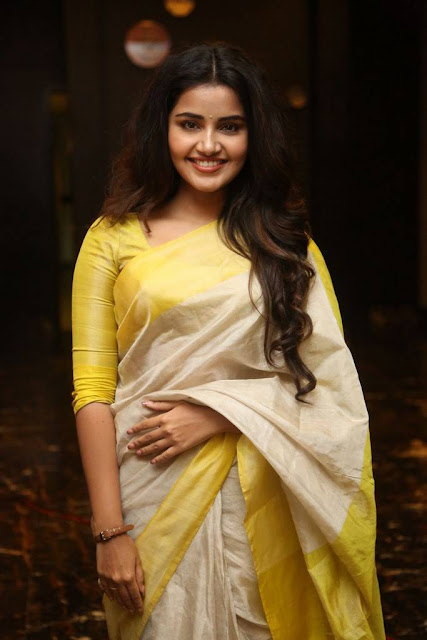 Anupama Parameswaran Stills At Sri Venkateswara Creations 2017 Success Celebrations