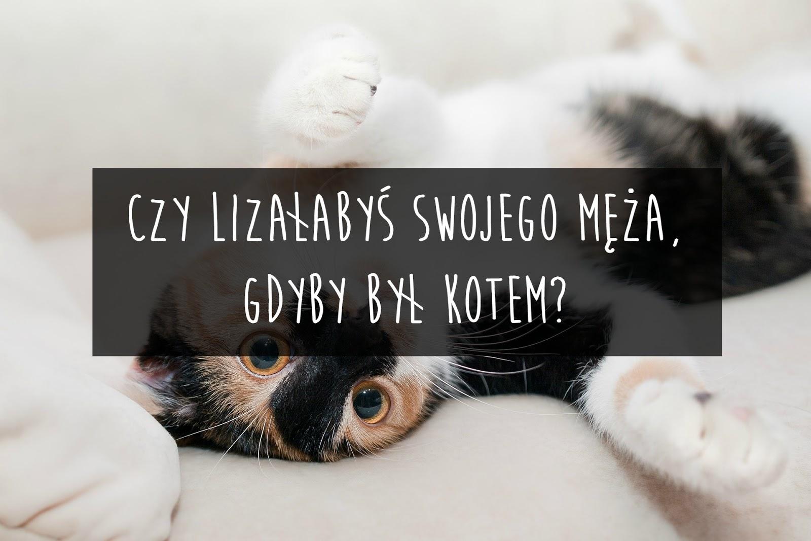 Czy lizałabyś swojego męża, gdyby był kotem?