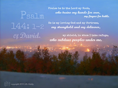 psalm 144 of David Bible Verse image by the funky felter