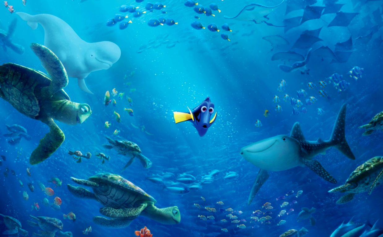 Finding Nemo Underwater Fish Sharks Turtles Cartoon Hd Wallpaper