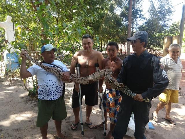 PM apreende cobra de 2 metros em casa no litoral Norte potiguar