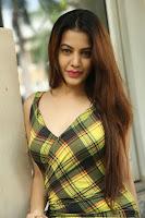 HeyAndhra Deeksha Panth Latest Glamorous Photos HeyAndhra.com