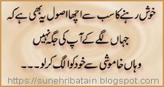 danai ki urdu batein, new facebook aqwale zareen, achi batein in urdu