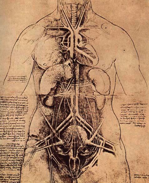 dibujos, Da Vinci