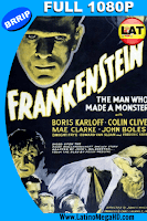 Frankenstein (1931) Latino Full HD 1080P - 1931