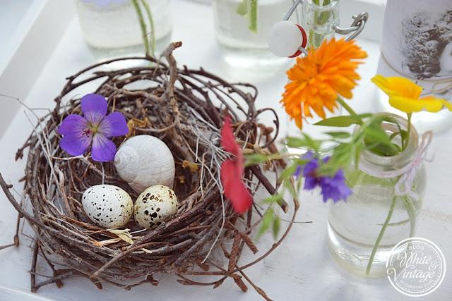 dekorieren und basteln mit Naturmaterialien