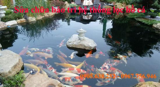 Bảo trì bảo dưỡng non bộ, hồ cá