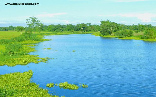 Tuni River Of Majuli Island