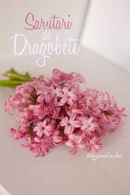 Sarutari de Dragobete si buchet de flori zambile roz