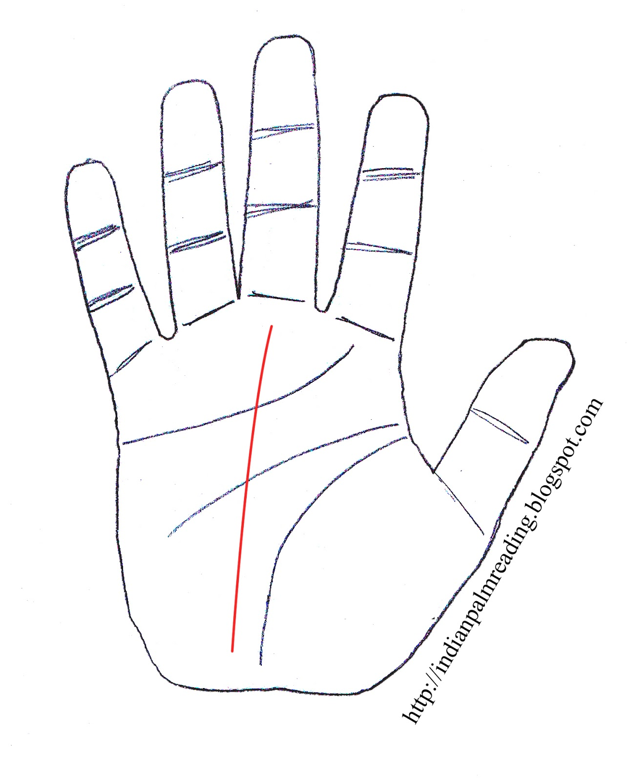 meaning of fate line in indian palmistry